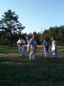 Aikido seminar Divčibare 2017